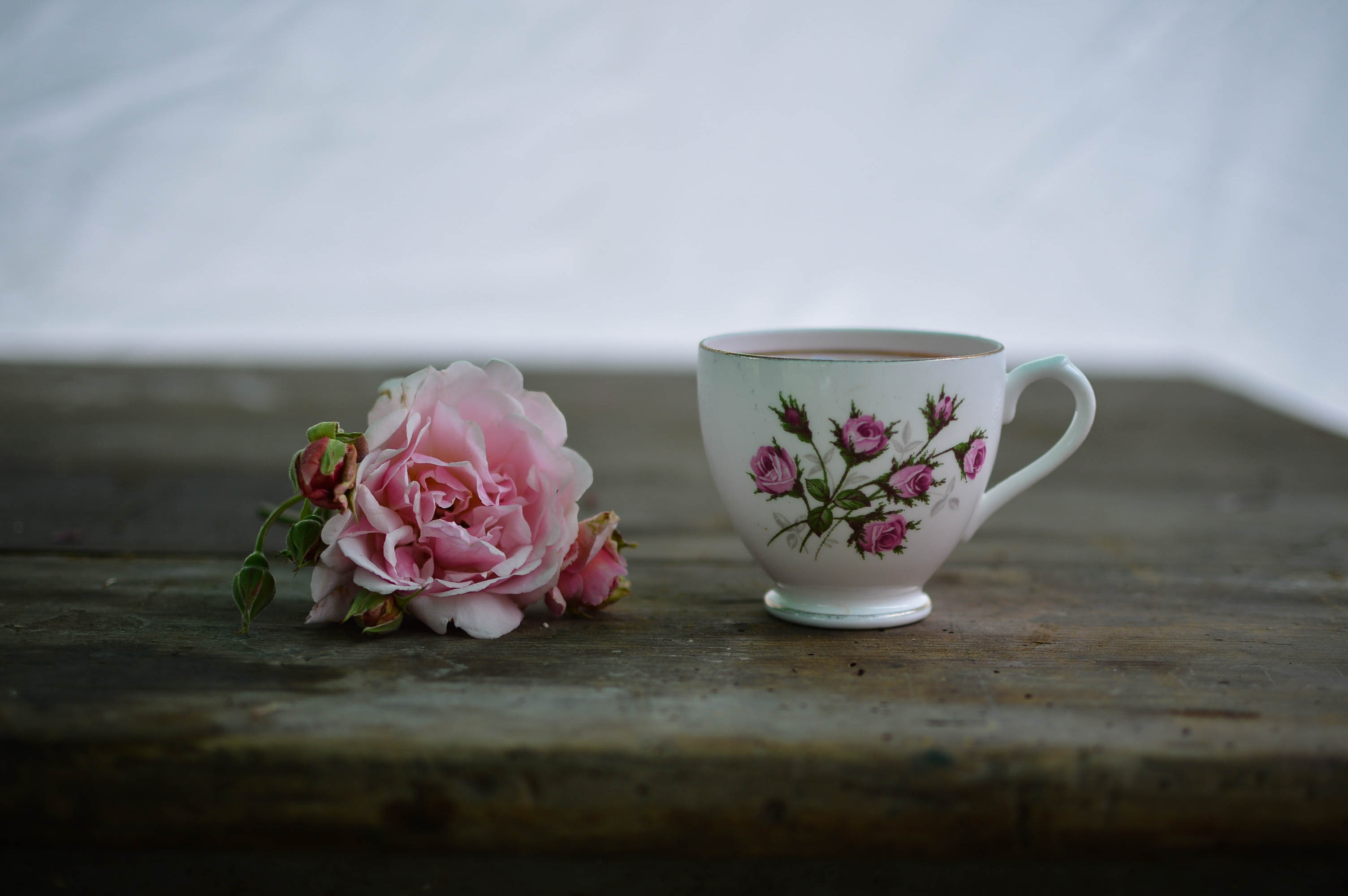 Rose and china teacup on wooden table